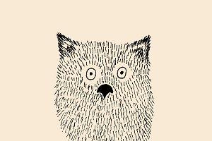 Hairy baby owl