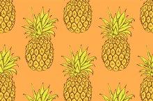 Sketch tasty pineapple