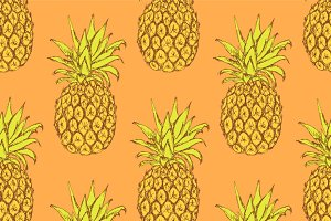 Sketch tasty pineapple