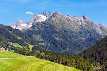 mountain with green land landscape