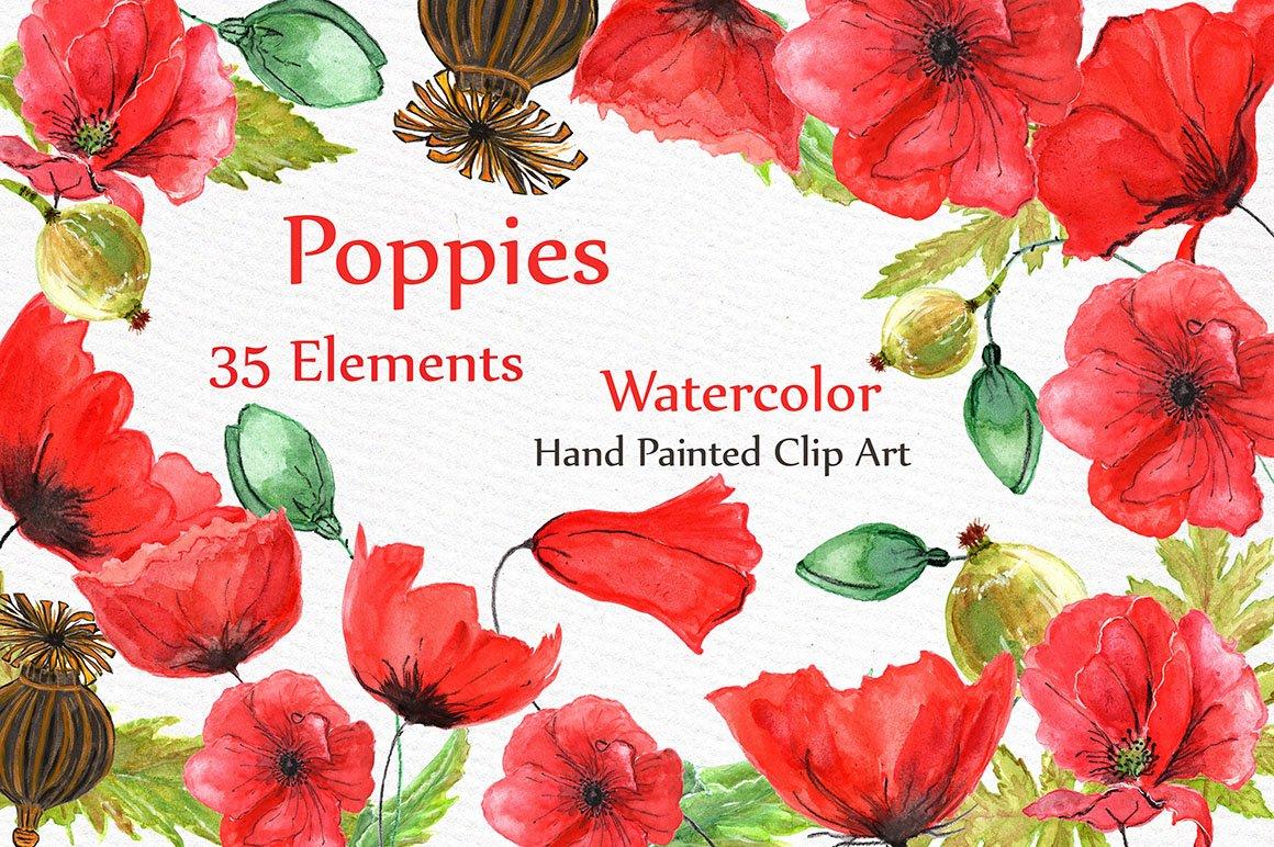 Watercolor flowers poppies clipart illustrations creative market mightylinksfo