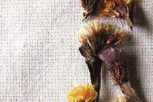Floral & Feminine 4 Portrait