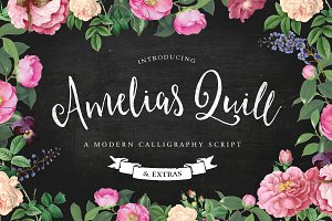 Amelia's Quill Script + Bonus