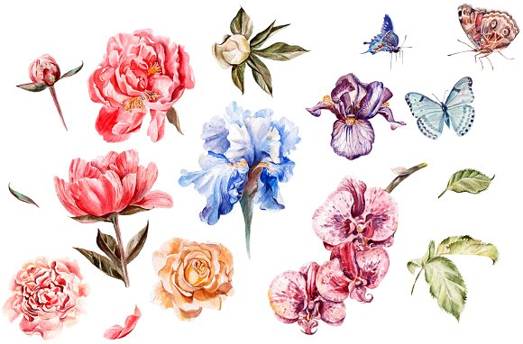 Beautiful watercolor flowers in Objects - product preview 1