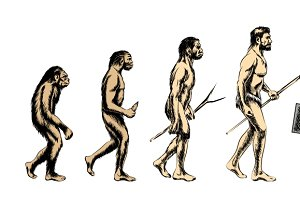 Vector businessman evolution