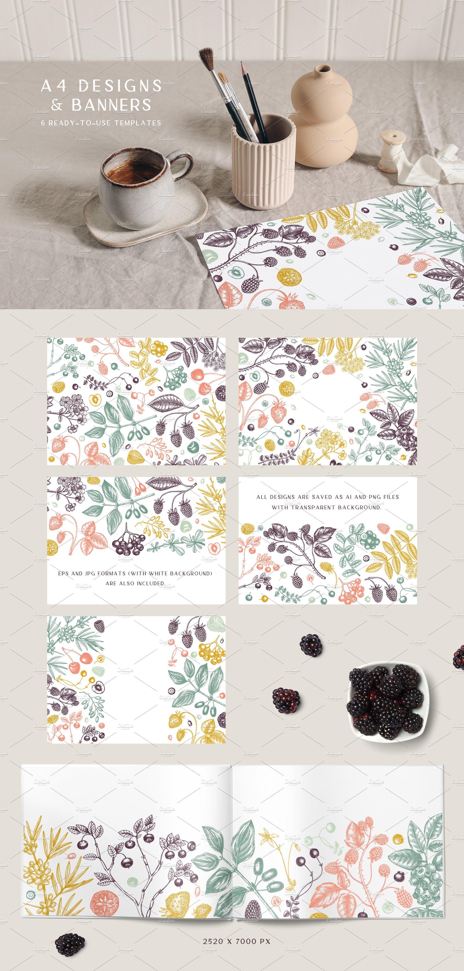hand drawn berries vectors and designs 08 6