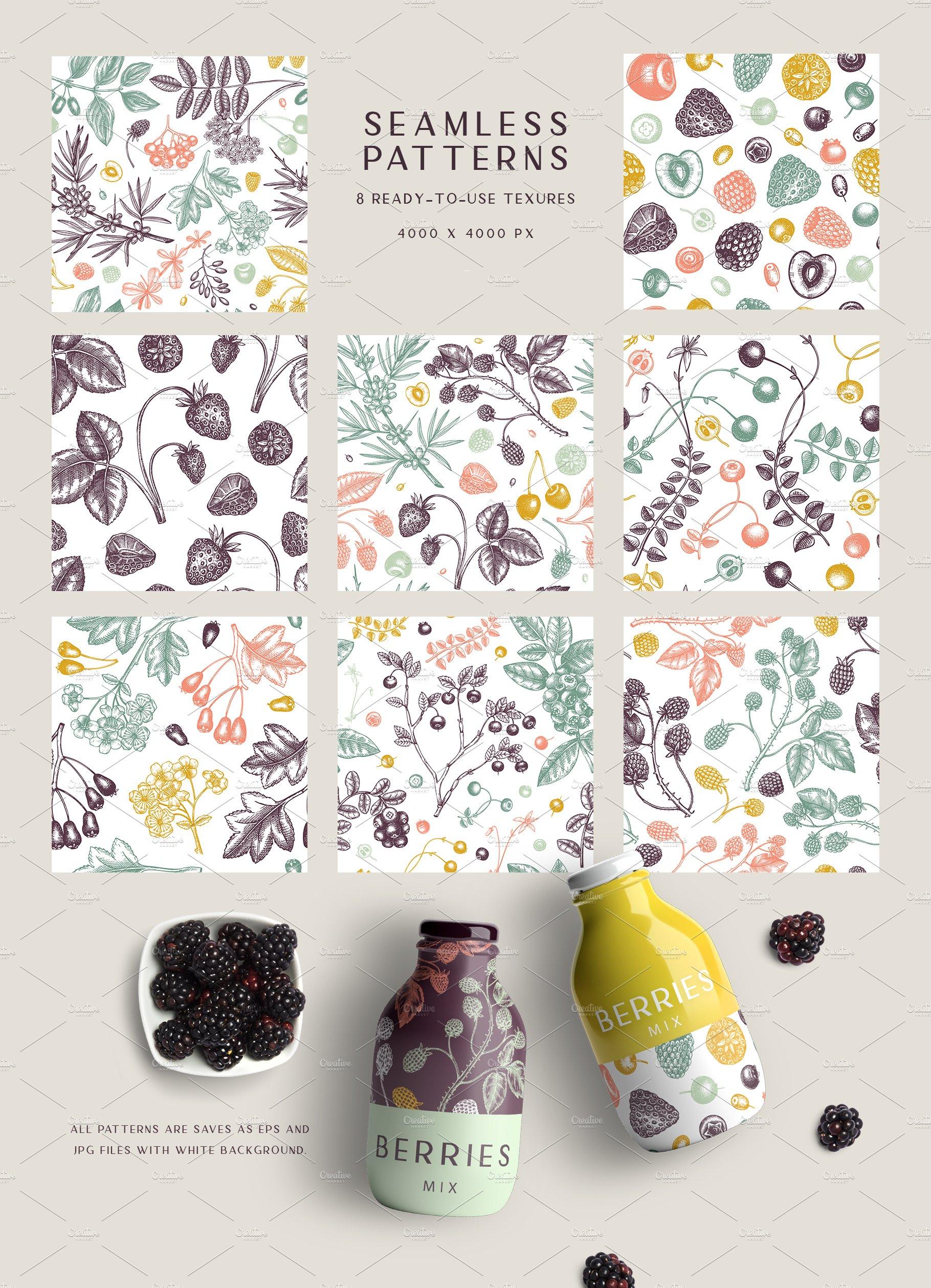 hand drawn berries vectors and designs 09 8