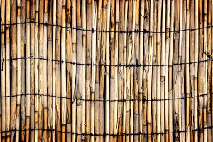 Wall of bound bamboo texture