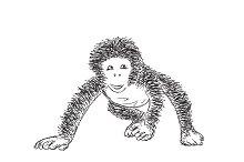 Hand Drawn Monkey. New Year Symbol