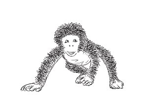 Hand Drawn Monkey. New Year Symbol