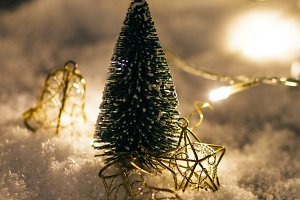 miniature Christmas tree in the snow
