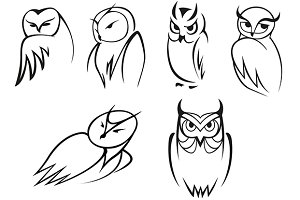 Owl bird icons in doodle outline sty