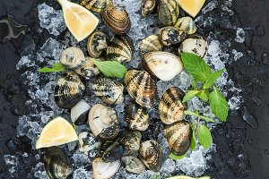 Fresh uncooked clams with lemon