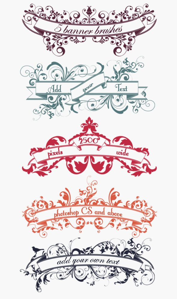 floral banner scroll brushes brushes creative market
