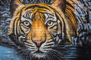 Tiger urban street art