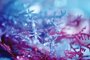 blue pink bokeh abstract light snowflake backgrounds