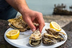 Male hand holding oysters