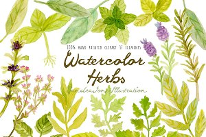 Watercolor Herbs- Hand painted