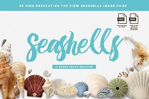 Seashells image files - Mockup Pack