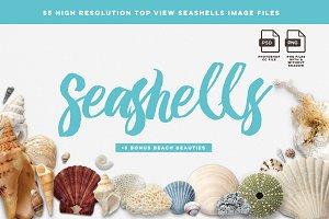 Seashells image files - Mockup Pack