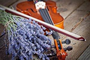 Vintage composition with violin