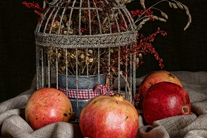 pomegranate with bird cage