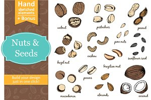 Nuts and seeds with seamless pattern