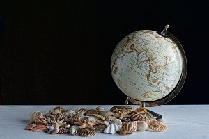 Sea shells and globe