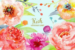 Watercolor Peony Clipart Rich