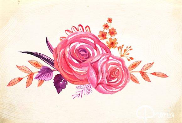 Coral Floral Watercolor Clip Art Set Illustrations Creative Market