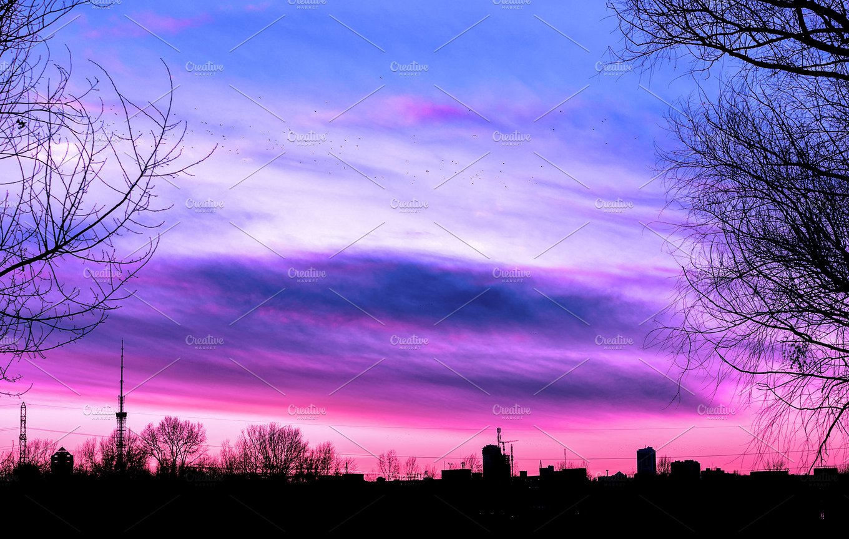 purple sunset surreal nature
