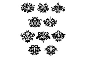 Black damask floral design elements