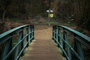 old bridge in autumn forest