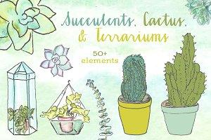 Watercolor Succulent Clipart