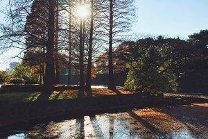 Beautiful sunshine and reflection