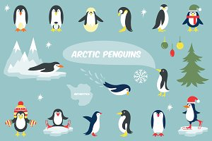 Cute penguin icons