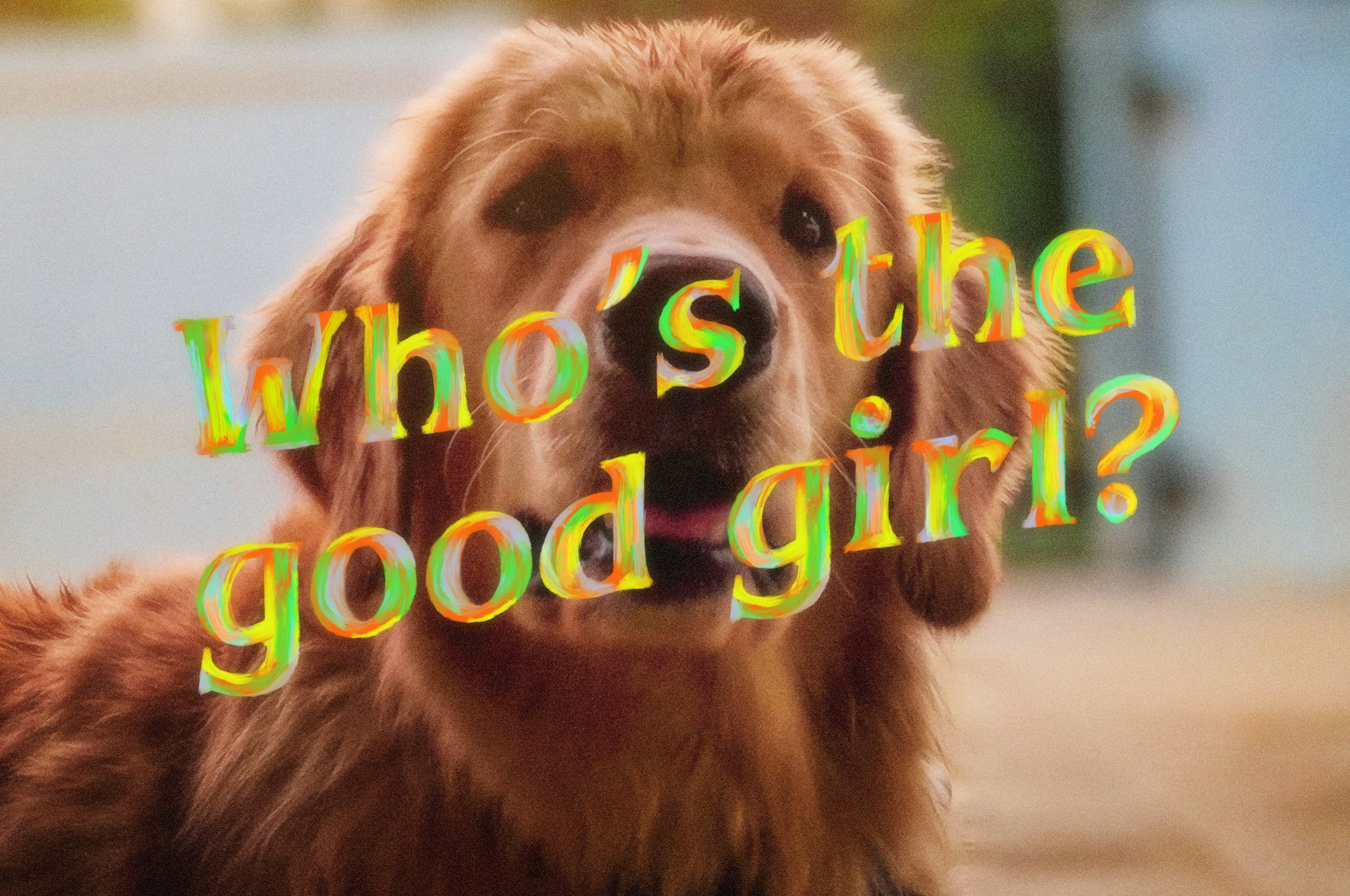 good vibrations dog 5
