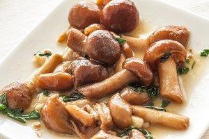Mushrooms appetizer