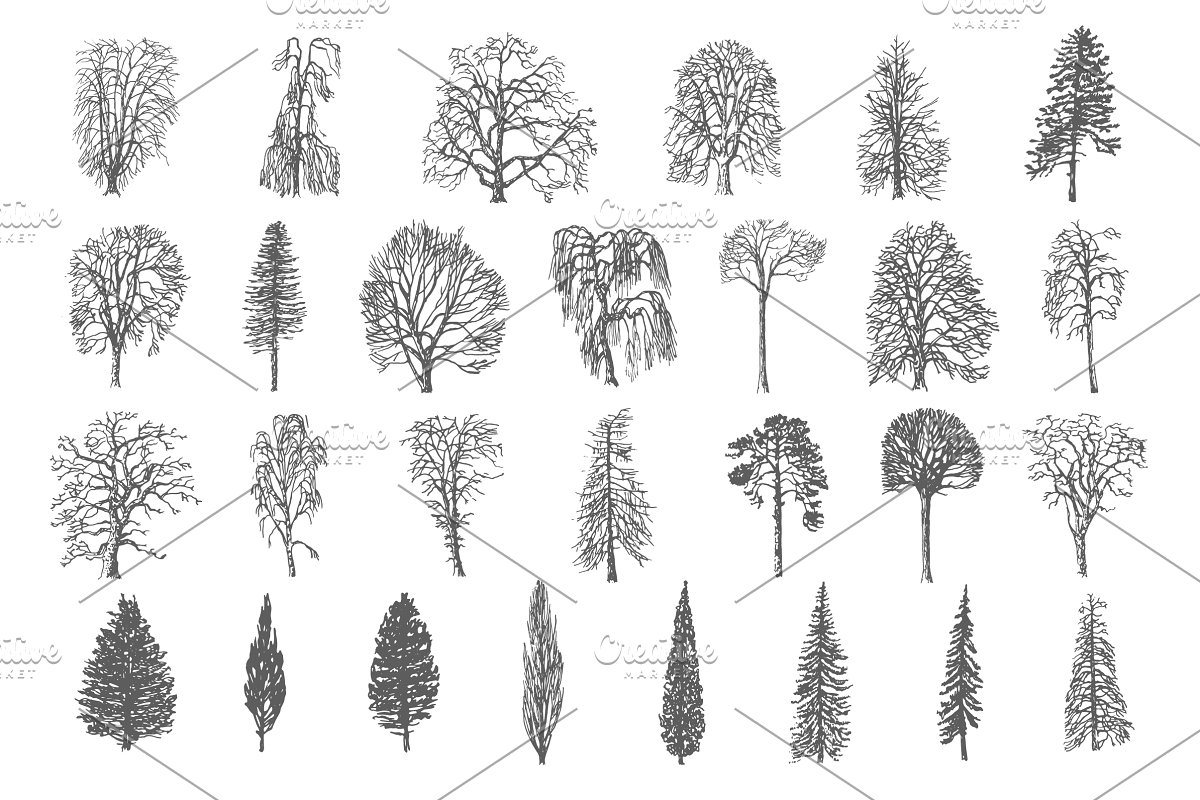 28 Ink trees vector set in Illustrations - product preview 8