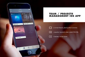 Team / Project Management iOS App