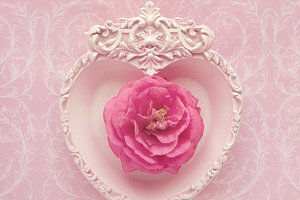 Pink heart - pink camellia