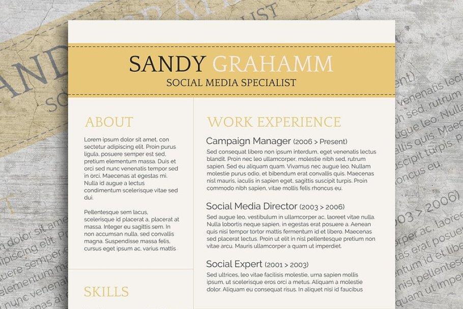 Professional CV + Cover Letter