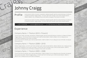 Professional MS Word CV