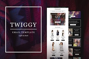 Twiggy E-Newsletter + Builder Access
