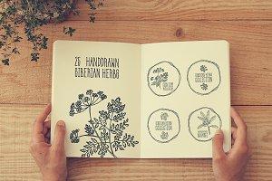 25 Handdrawn Siberian Herbs