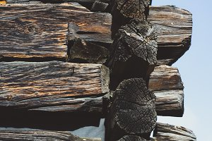 Background Texture of Old Log Wood