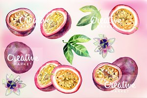Passion fruit watercolor