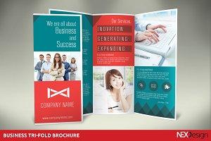 Business Tri-Fold Brochure -SK #011