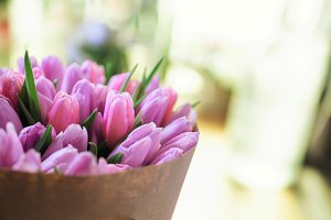 pink tulips in vase selective focus