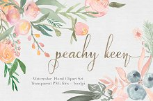 Peachy Keen Watercolor clipart Set
